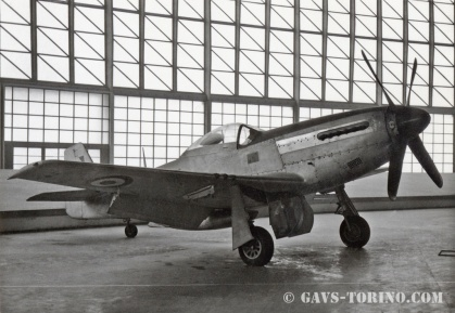 1_P-51D Mustang-1